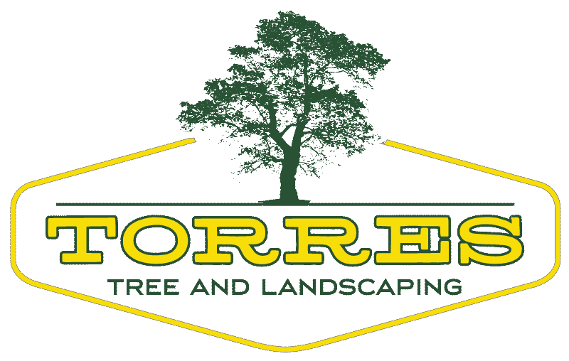 torres-tree-service-llc
